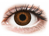 Brown contact lenses - non dioptric - Expressions Colors Brown - plano (1 lens)