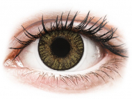 Brown contact lenses - dioptric - FreshLook ColorBlends Pure Hazel - power (2 lenses)