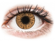 Brown contact lenses - dioptric - FreshLook Colors Hazel - power (2 lenses)