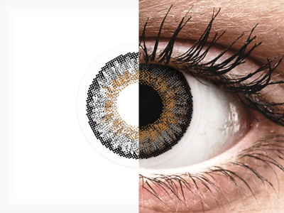 FreshLook One Day Color Grey - plano (10lenses)