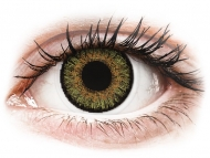 Green contact lenses - non dioptric - FreshLook One Day Color Pure Hazel - plano (10 lenses)