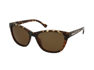 Cat Eye sunglasses - Crullé P6085 C3