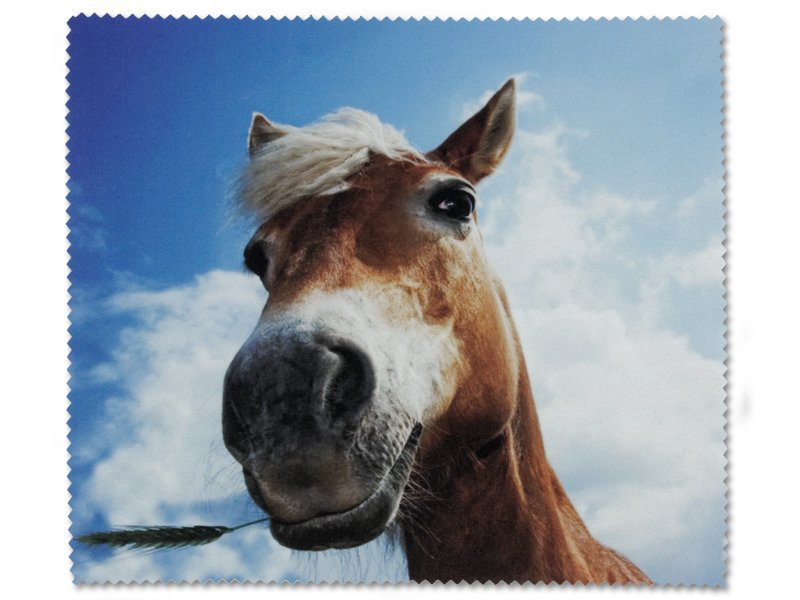 Glasses cleaning cloth - Horse