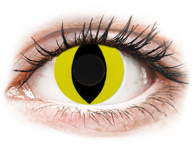 CRAZY LENS - Cat Eye Yellow - daily plano (2 lenses)